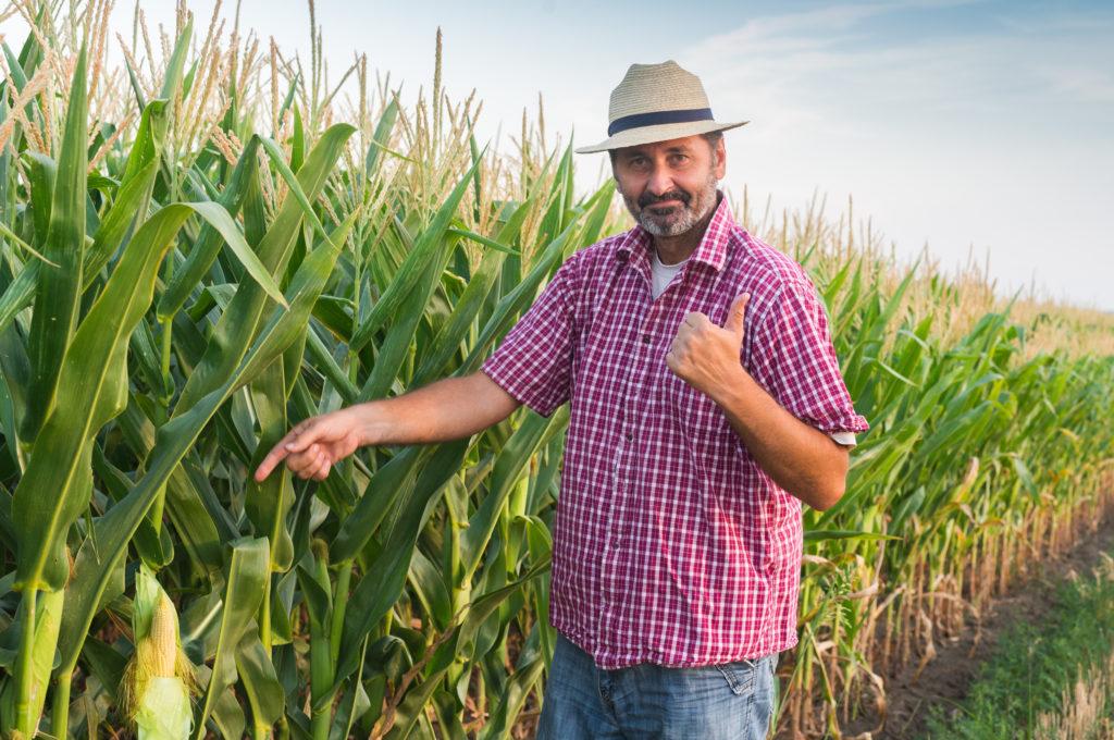 eladó föld x-agro, szántó eladó, szántó hirdetés, termőföld, x-agro, agrotax