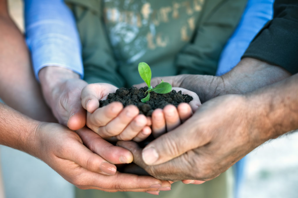 termőföld öröklés, végrendelet, x-agro, hagyaték, szántó, termőföld